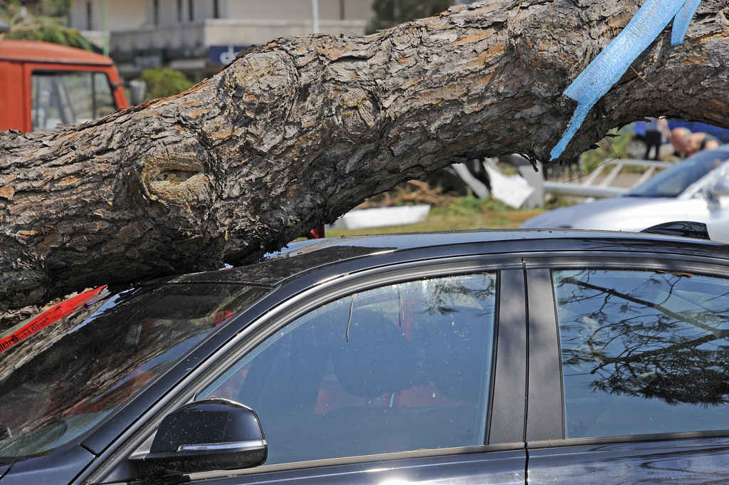 Seguro auto para desastres naturais